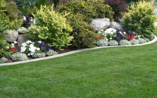 Landscaping Services Minneapolis MN
