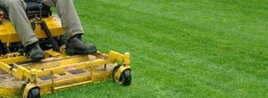 Lawn Mowing Service Minneapolis