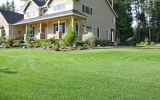 Lawn Service Minneapolis MN